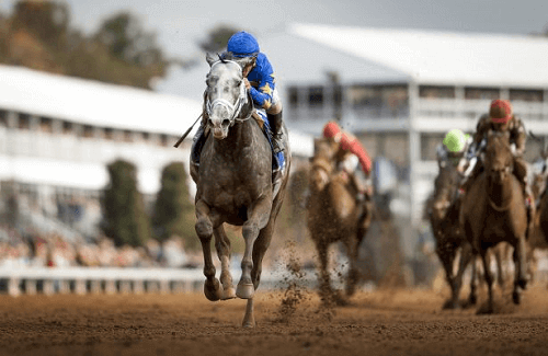 Dirt Mile Breeders' Cup race