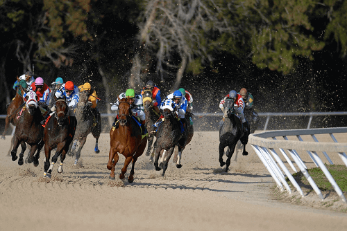 horses running on a dirt track betting strategy