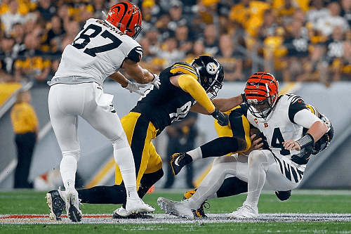 steelers win against bengals USA